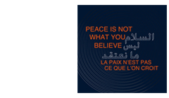 Peace is not what you believe.SHARJHA BIENNAL 2013 BS11
